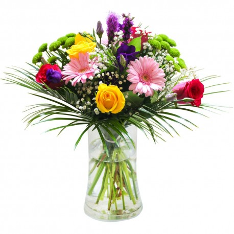 Fresh Morning