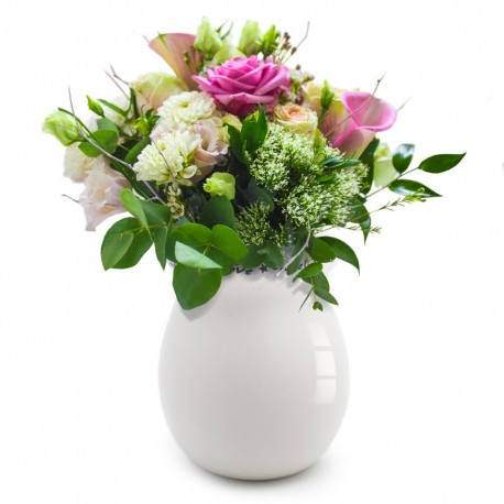 Morning Grace