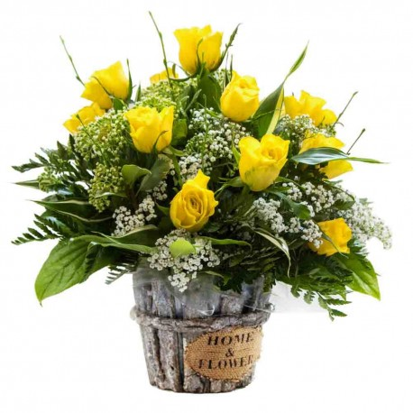 Sunshine Radiance